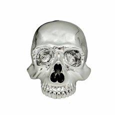 画像6: 1/1 SKULL HEAD CHROME SILVER Ver.  (6)