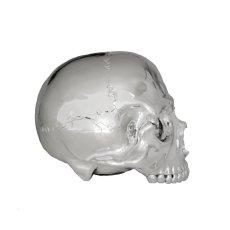 画像4: 1/1 SKULL HEAD CHROME SILVER Ver.  (4)