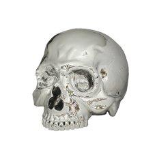 画像1: 1/1 SKULL HEAD CHROME SILVER Ver.  (1)