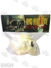 画像3: 骸骨頭 1/1 SKULL HEAD (3)