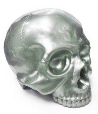画像1: 1/1 SKULL HEAD SS SKULL (1)