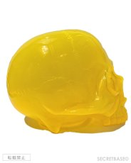 "画像3: 1/1 SKULL HEAD CLEAR CLEAR  ""MIKAN"" ORANGE (3)"